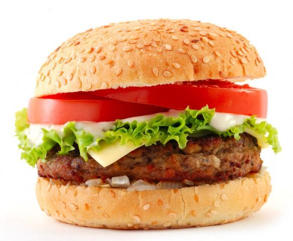 Hamburger Ekmeği Geliştirme Ürünü
